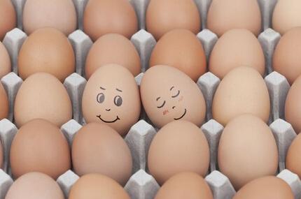 每天吃多少鸡蛋最好