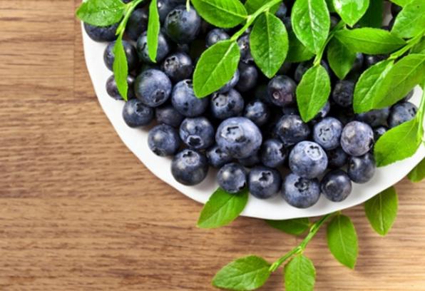 常吃蓝莓的五个益处 可以保护视力哟