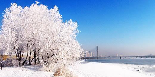 哈尔滨冬季旅游升温 找冷的游客络绎不绝