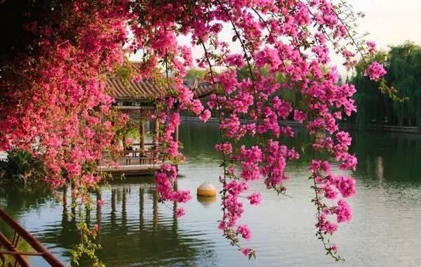 春节过后适合游玩的七个地方