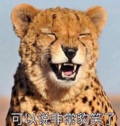非常豹笑是什么梗