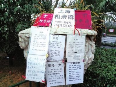 中国式相亲怪现象 为啥条件越好越难找?