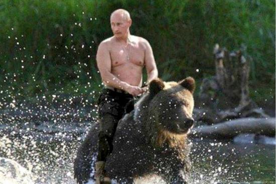普京回应骑熊照:从没有骑过熊但这些照片确实存在