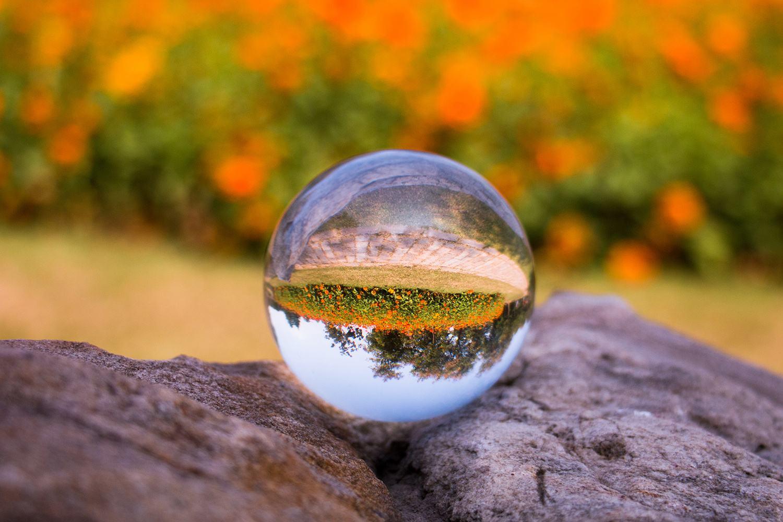 企业纷纷上调报价 玻璃期价下跌步伐暂缓