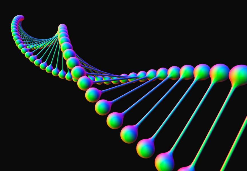 """尽管Kelly兄弟二人有着相同的DNA,但不同的环境因素会影响基因表达的方式。Scott的脊柱在无重力环境发生了短暂性伸展,同时还有很多在哥哥Mark体内观察不到的基因调整。美国宇航局双胞胎研究的首席研究员克里斯托弗·梅森表示:""""当Scott进入太空后,体内基因表达能力异常旺盛,不过免疫系统、视网膜等功能却停滞不前。"""""""