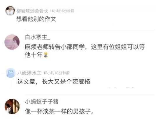 小学生暗恋作文惊呆网友 网友直呼要逆天!