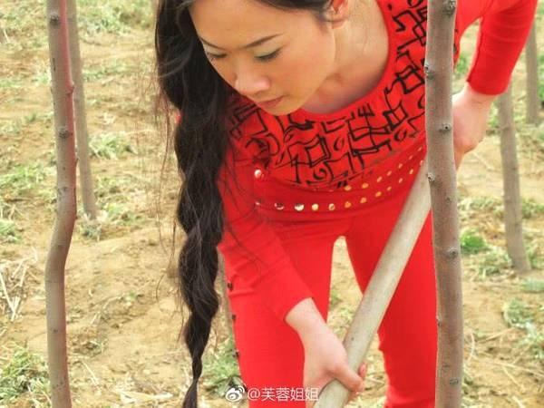 芙蓉姐姐穿这身去种树