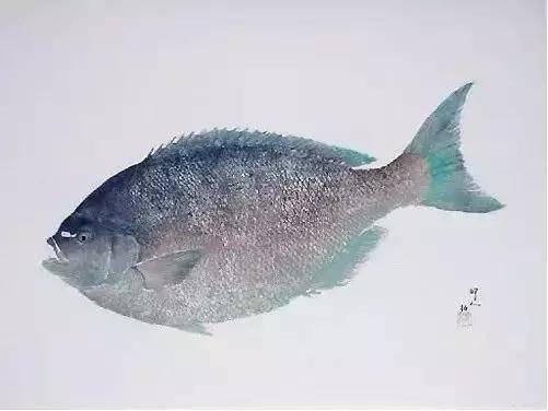 鱼拓严格上讲不是画
