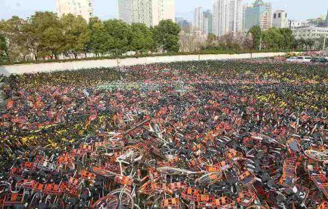 上海空地成单车海洋
