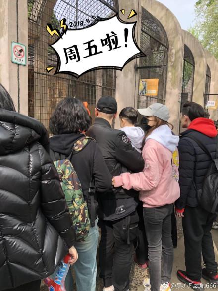 动物园偶遇黄晓明 一家人出游温馨有爱