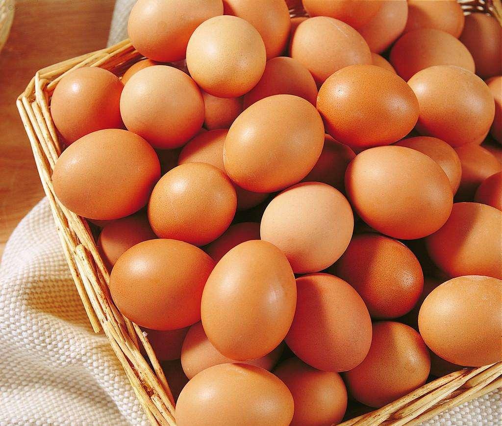 全国蛋价继续回升 鸡蛋价格基本触顶