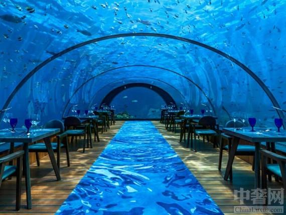 世界最大的海底餐厅将举办海底瑜伽