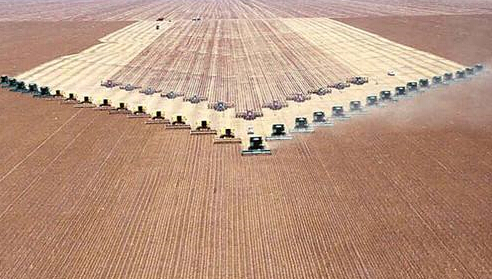 美国对华大豆出口销售总量下降近两成