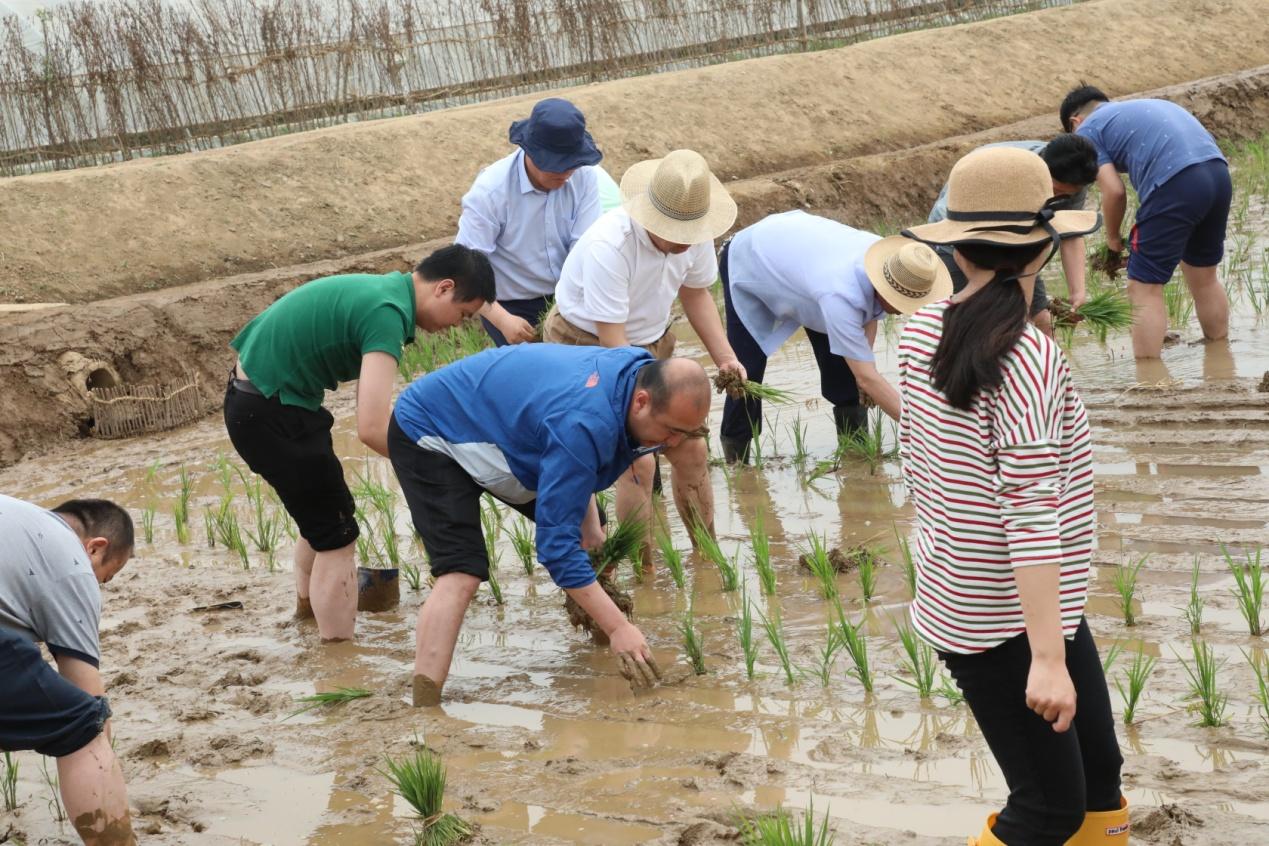 中国外交官赴朝农场支农 提供力所能及的帮助