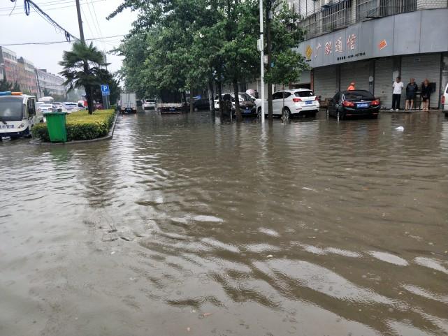 河南周口一夜成水城 降水普遍达到中雨以上级别