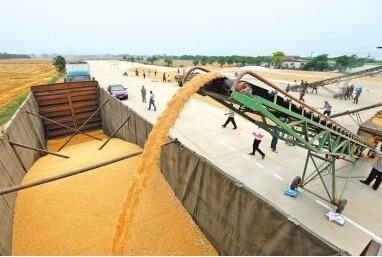 中国对亚太五国大豆进口关税下调至零