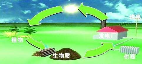山东生物质能利用量折合标准煤约4500万吨