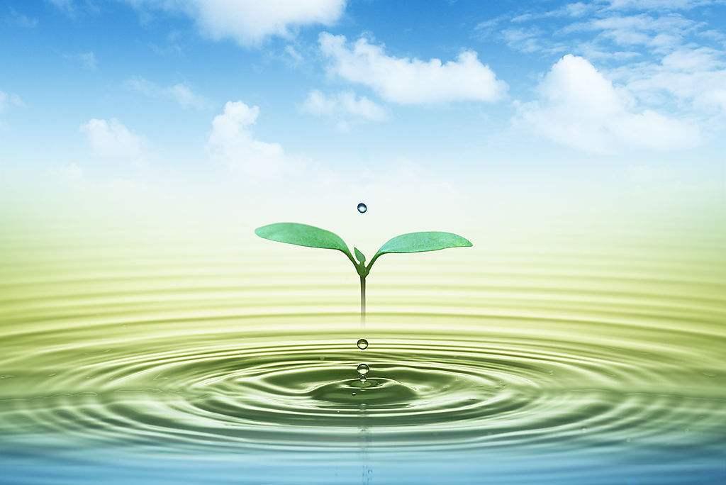 构筑北疆万里绿色长城 内蒙古召开生态环境保护大会