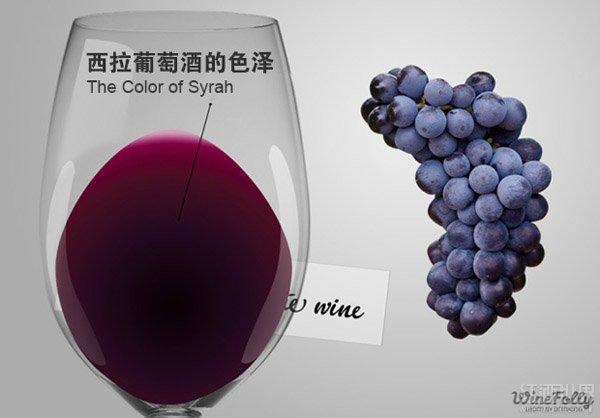 揭密西拉葡萄酒