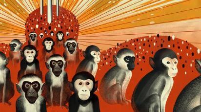中国研究猕猴自闭症 部分美国科学家担忧:要out了