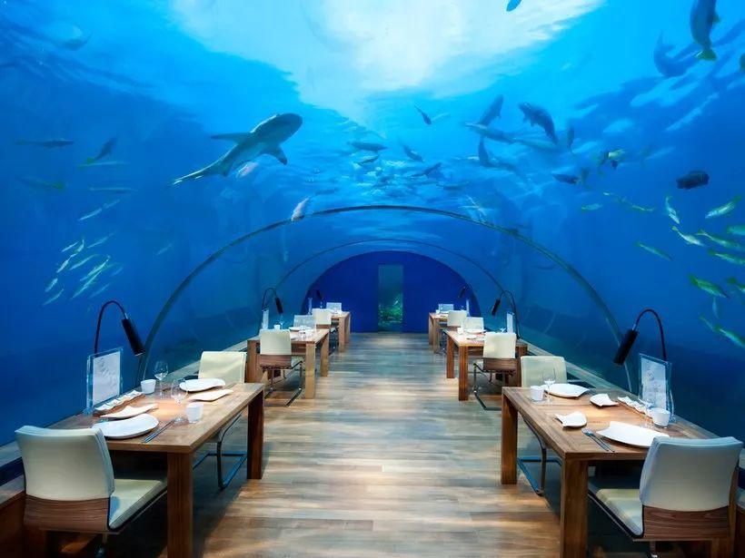 全球最酷的十大水下酒店