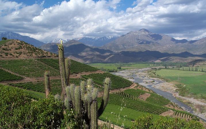智利葡萄酒的心脏 阿空加瓜