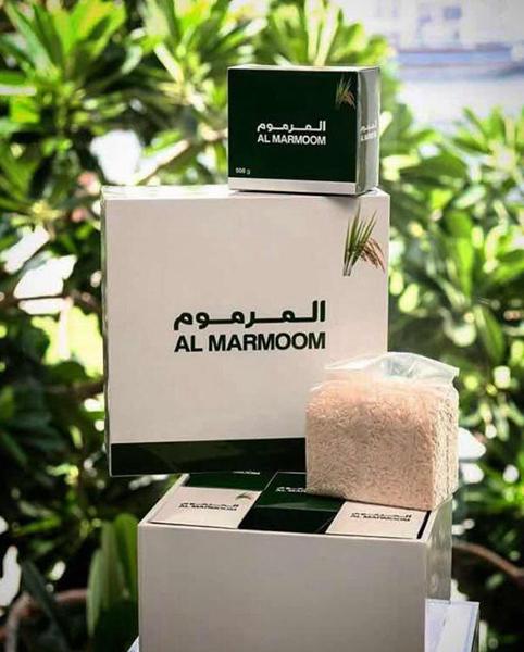 沙漠海水稻获成功 迪拜酋长对此高度重视