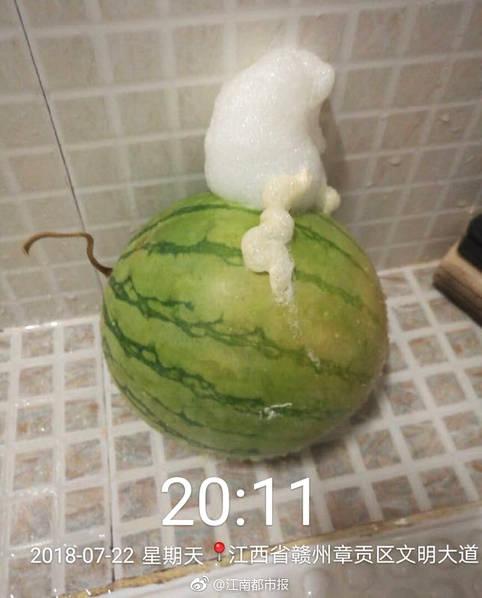 西瓜居然吐泡泡 专家建议不要再食用