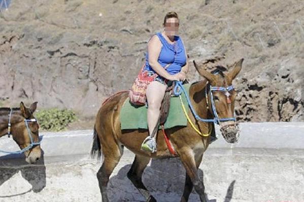 """胖游客越来越多 圣托里尼岛上交通工具""""驴""""饱受摧残"""