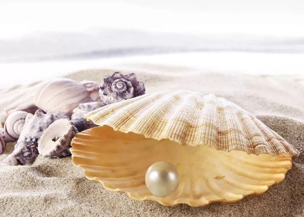 珍珠这种备受青睐的首饰 应不应该24小时佩戴