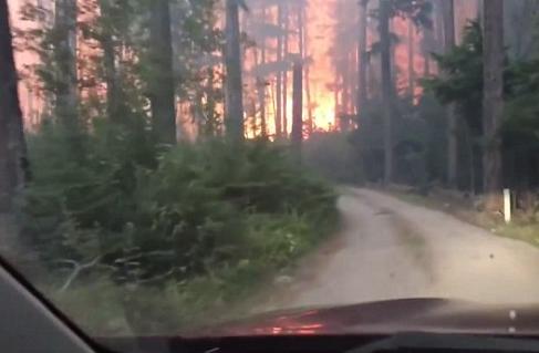 父子驾车穿越火海 险些因为森林大火丧命