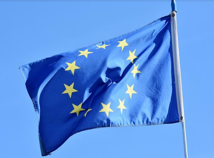 欧洲央行行长将有重磅人物参与竞选