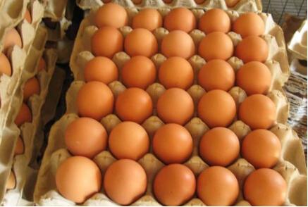 双节后蛋价有望迎来季节性下跌行情