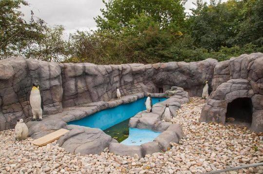 英国现山寨景点 建造成本高达数万英镑