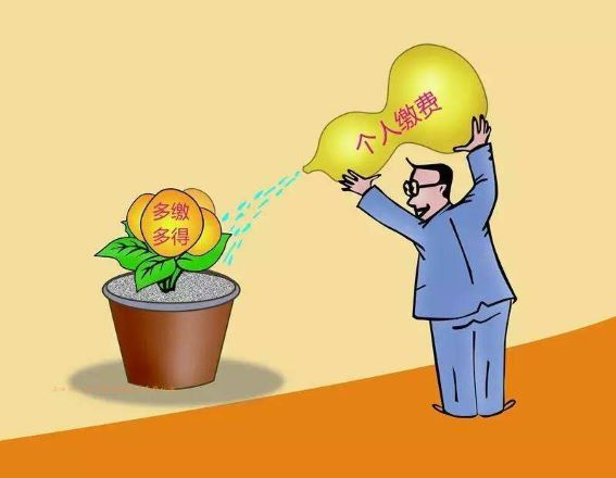 岳阳市社保处开通网上经办服务平台 足不出户办理养老保险业务