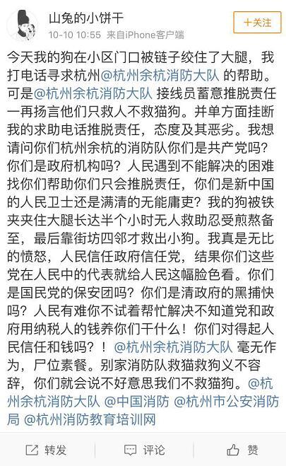 中国消防回应不救猫狗:应急救援资源有限