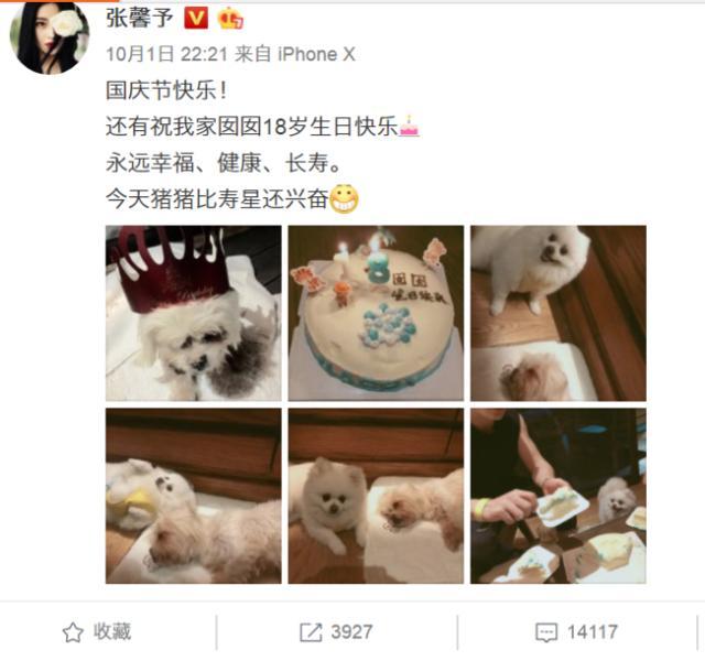 张馨予发文悼念爱犬看哭网友 前不久刚过完18岁生日