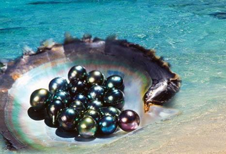 大溪地黑珍珠 享有皇后之珠和珠中皇后美誉