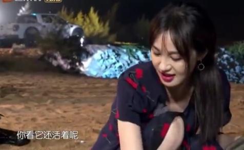 李菲儿放生龙虾遭质疑 回应:拒绝人设绑架
