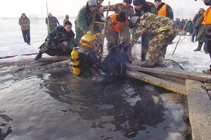珠江落水男子尸体被找到 警方已提取家属DNA作进一步确认