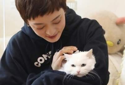 目睹动物演员被遗弃 孙俪收养甄嬛传白猫