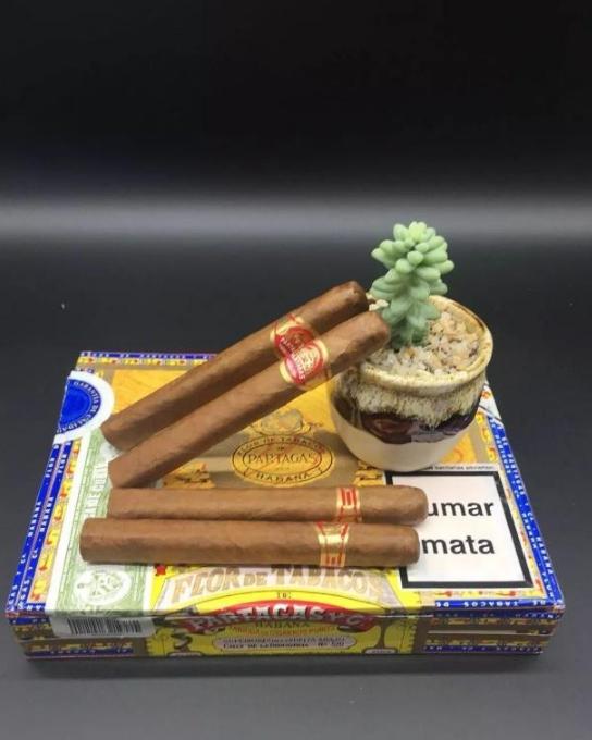 唯佳品鉴会和持灰比赛在三客行举行 深入浅出了解唯佳雪茄品牌