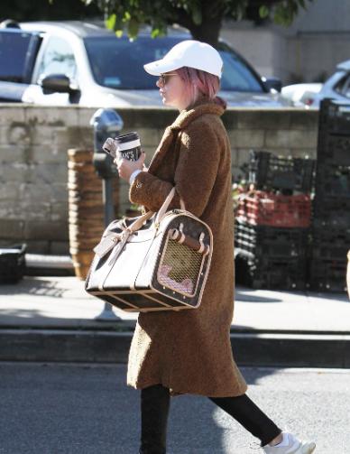 Ashley Tisdale提宠物包现身街头 粉头发搭配白帽子少女范儿十足