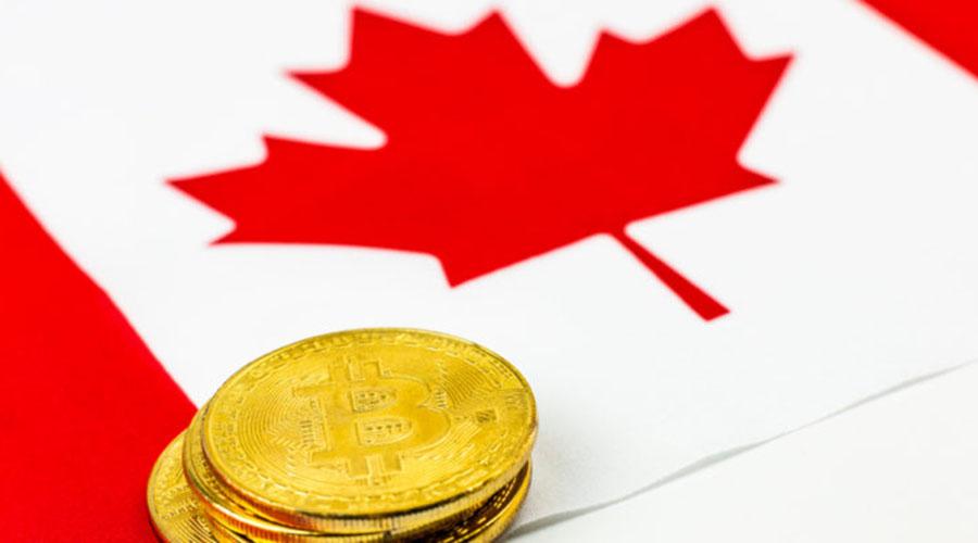 加拿大选举机构就筹款中是否接受比特币提出意见