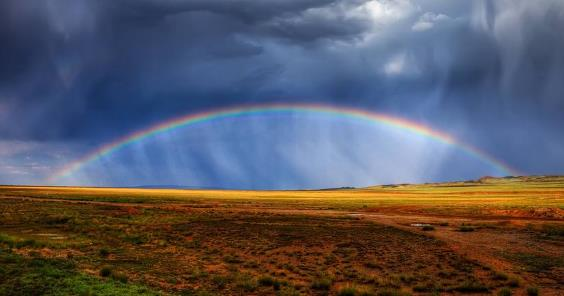 多重利好因素助推下 黄金价格雨后见彩虹