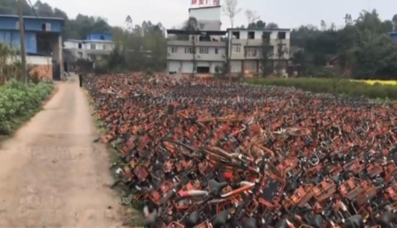 共享单车堆满农田 村民称都没办法种粮食