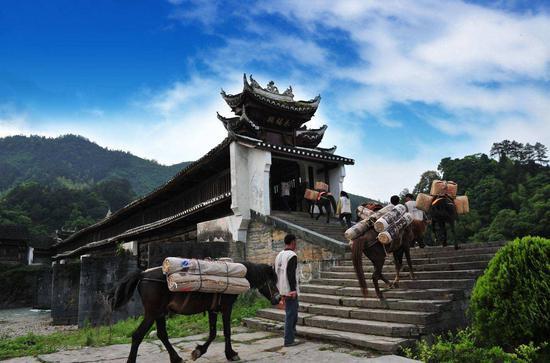 茶马古道文化博物馆 展示古今中外各类茶马古道的文化展品