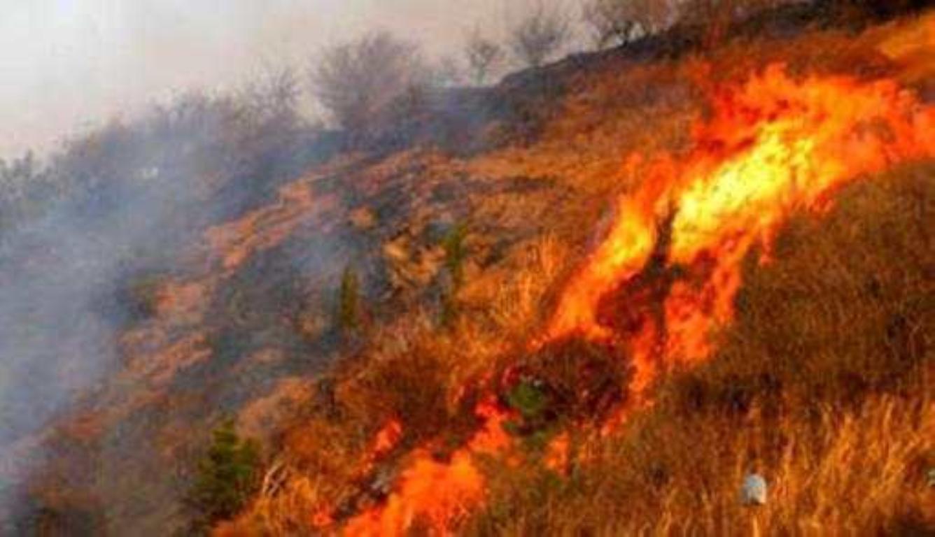 济南突发山火 初步判断火灾是坟烧纸引起