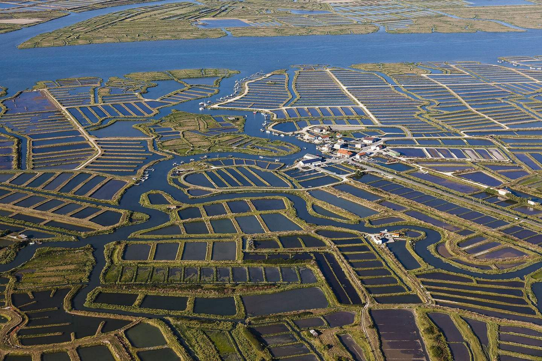 10部门印发意见推动水产养殖业绿色发展