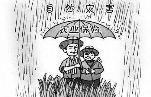 青岛市出台设施农业政策性保险工作方案